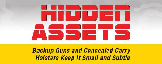 hidden-assets-header