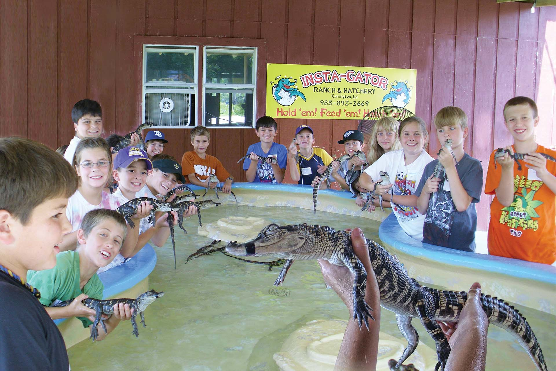 Insta-Gator Alligator Ranch